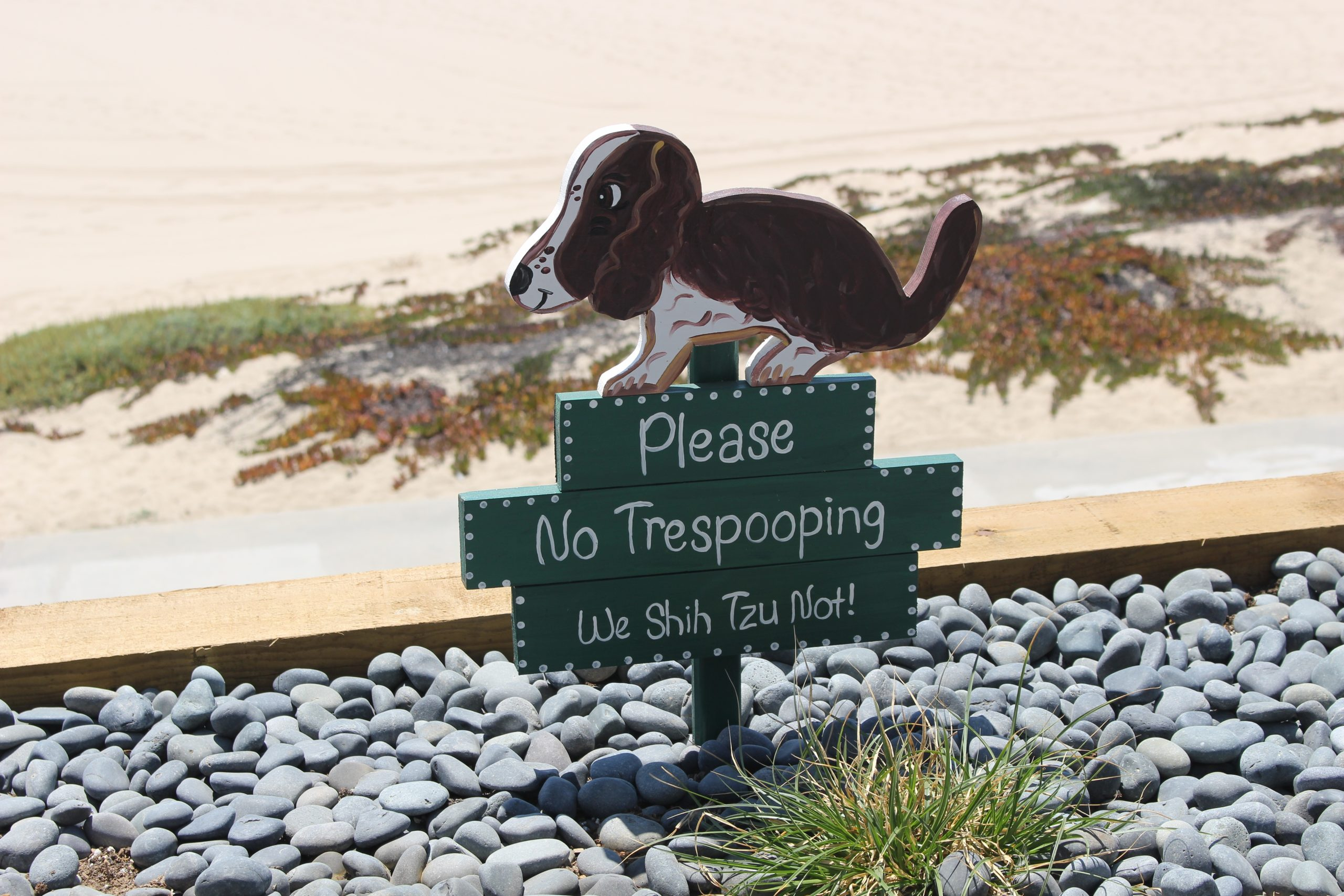 A Sign That States That No Dog Is Allowed To Poop In This Area