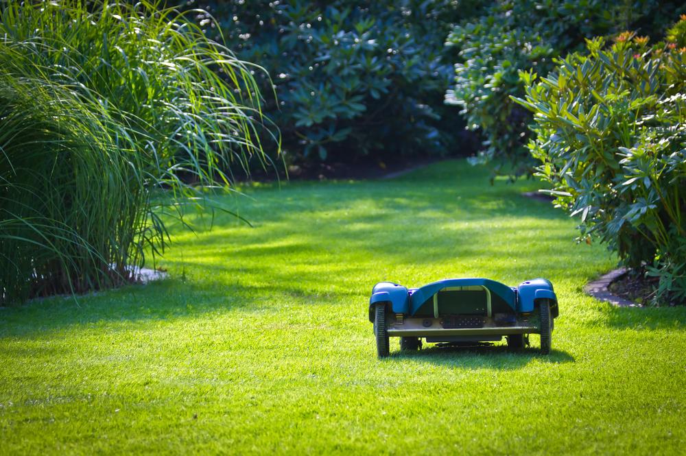 Robotic Lawn Helper