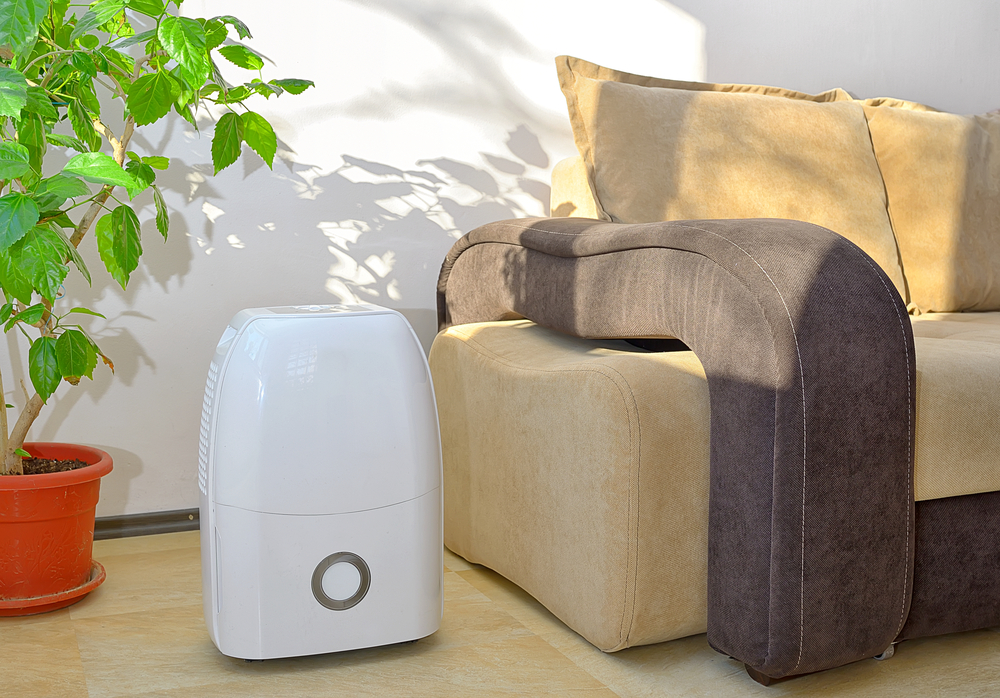 Small and Portable dehumidifier collect water from air