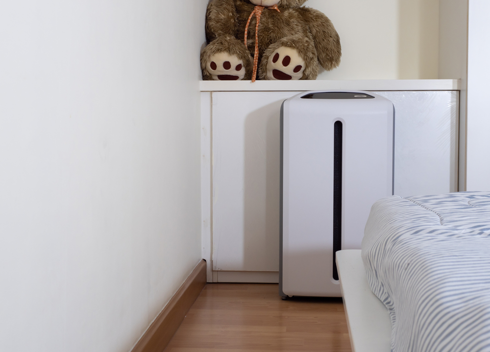 Are Air Purifiers A Waste Of Money? (A Must Know) Everything